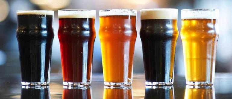 Пиво и его свойства для организма