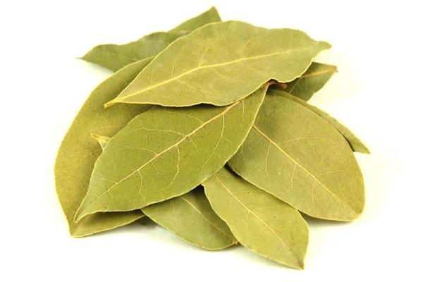 Полезные для кожи ловровые листья
